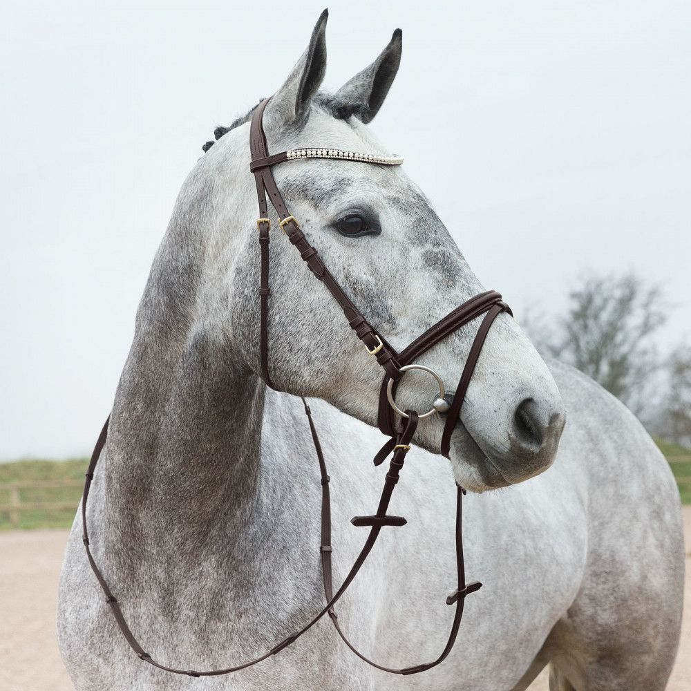 Horze-Trajan-Leather-Snaffle-Flash-Bridle-with-Narrow-Browband-and-Reins miniature 19