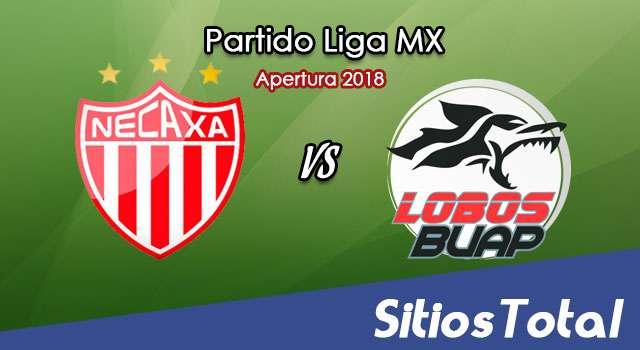 Ver Necaxa vs Lobos BUAP en Vivo – Apertura 2018 de la Liga MX