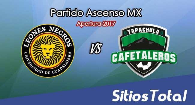Ver Leones Negros vs Cafetaleros de Tapachula en Vivo – Online, Por TV, Radio en Linea, MxM – Apertura 2017 Ascenso MX