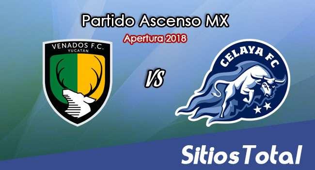 Ver Venados vs Celaya en Vivo – Ascenso MX en su Torneo de Apertura 2018