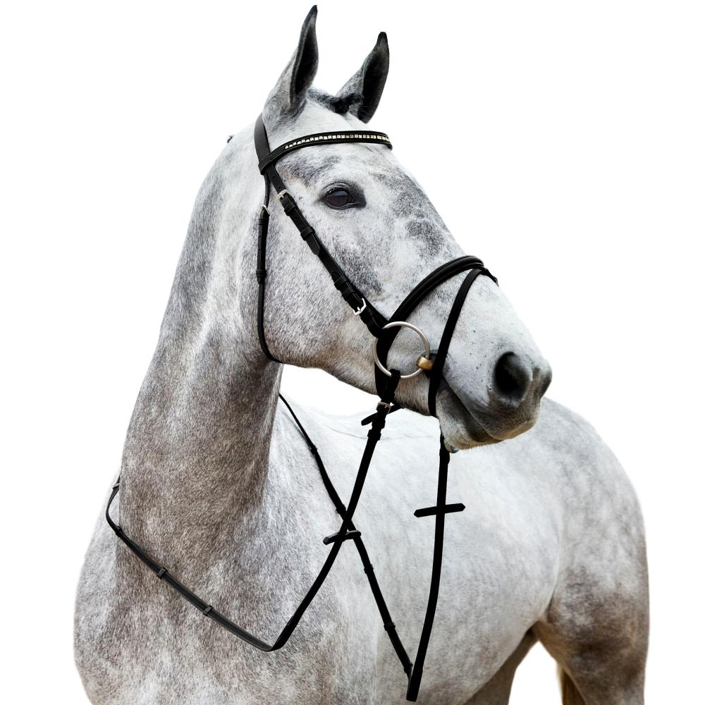 Horze-Spirit-Weston-Bridle-Narrow-Noseband-with-Flash-and-Web-Reins miniature 8