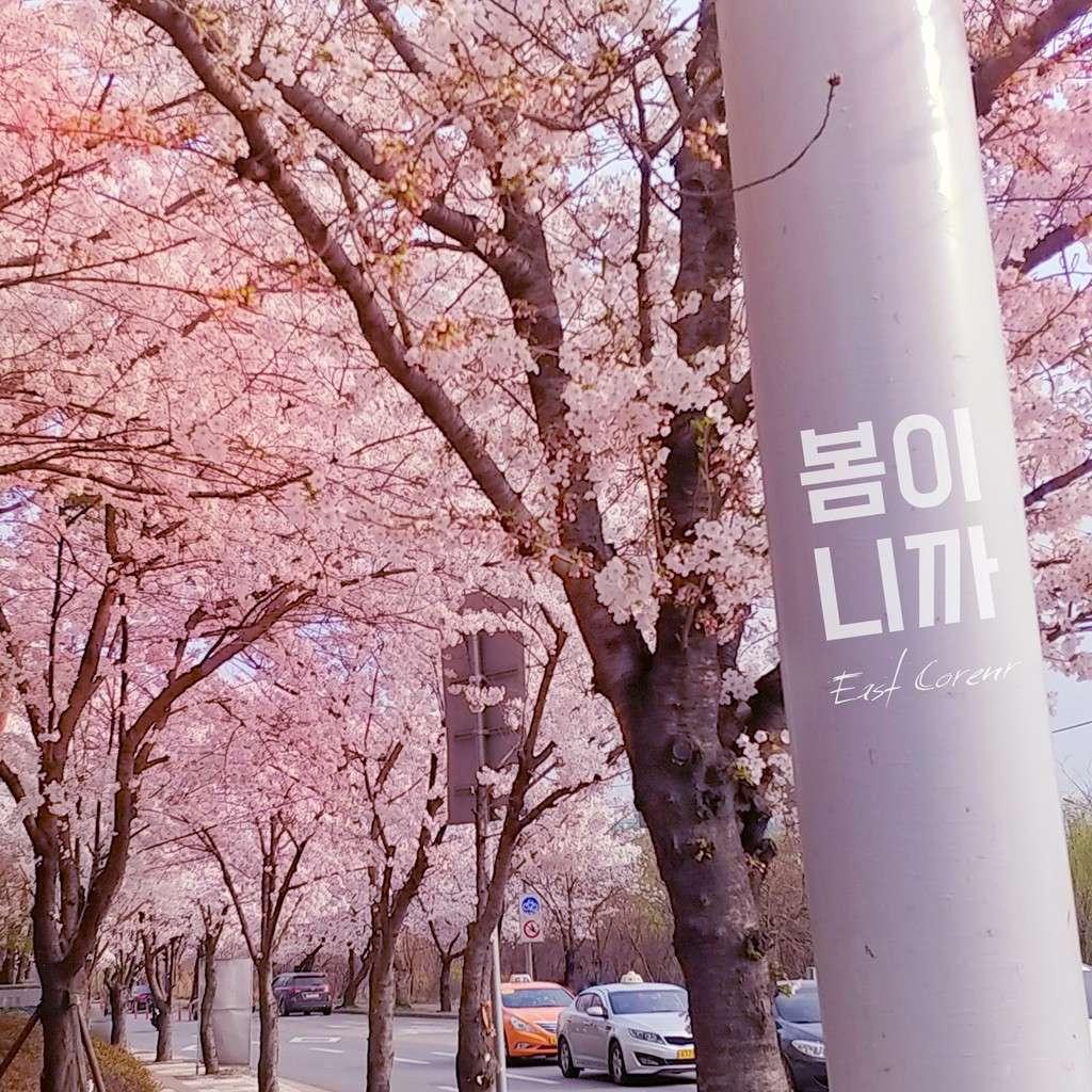 Download East Corner - 연애의 정령 Mp3