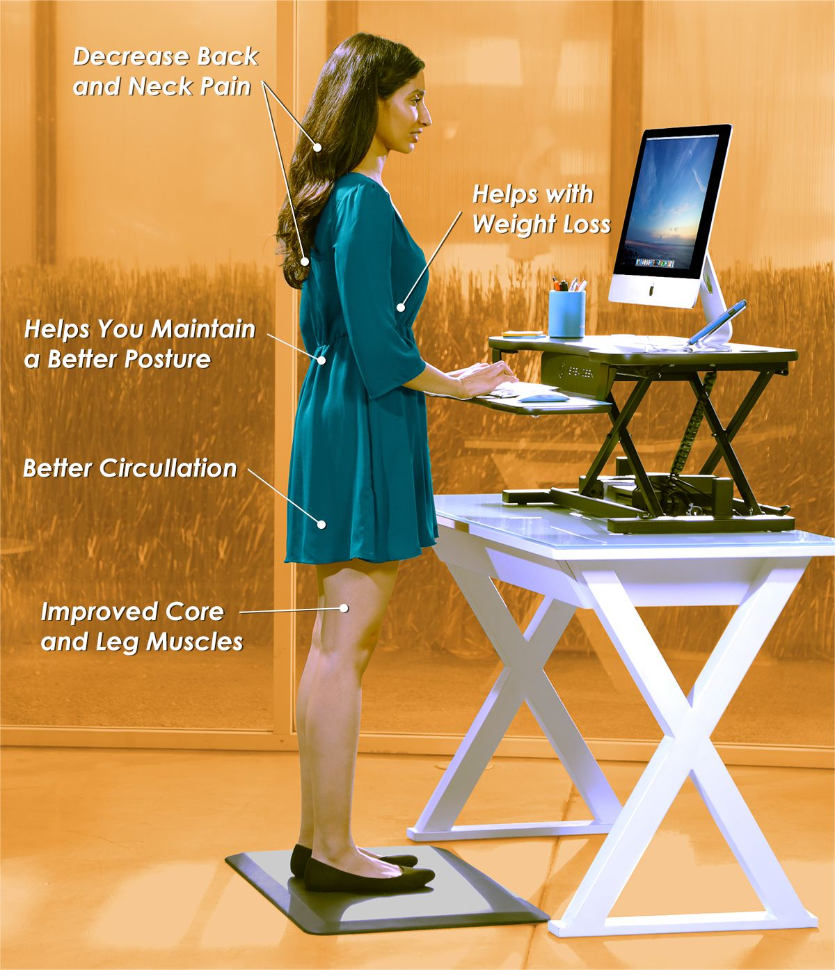 Decrease Back and Neck Pain - Helps with Weight Loss - Helps You Maintain a Better Posture - Better Circulation - Improved Core and Leg Muscles