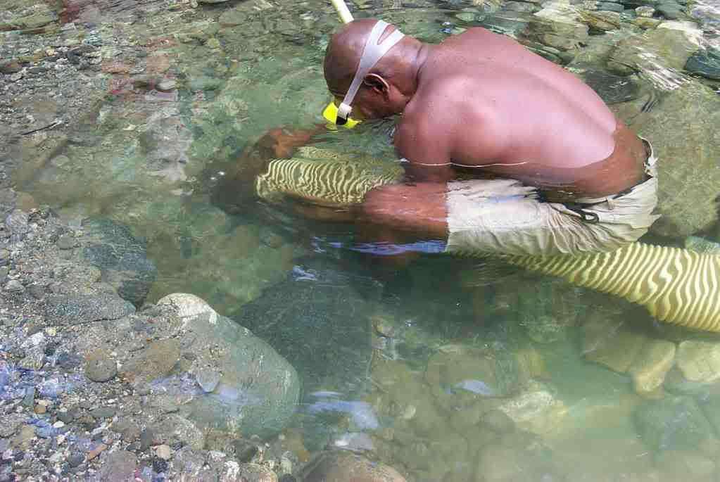 Самородки Папуа Новая Гвинея Q5BFto