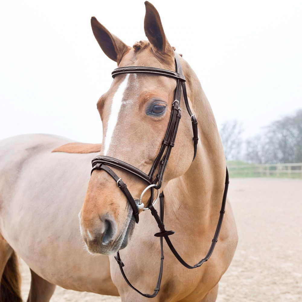 Horze-Supreme-Sparta-Snaffle-Bridle-with-Padding-and-Detachable-Flash miniature 12