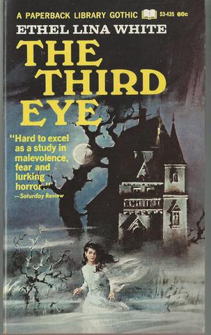 The Third Eye A Paperback Library Gothic First Printing, Ethel Lina White