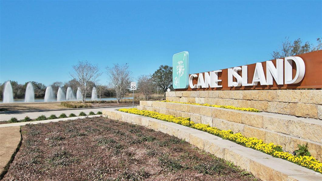 Homes For Sale and Rent in Cane Island, Katy Texas