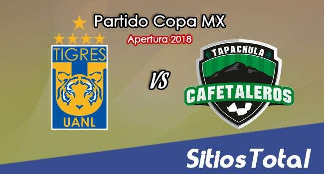 Tigres vs Cafetaleros de Tapachula en Vivo – Copa MX – Miércoles 8 de Agosto del 2018