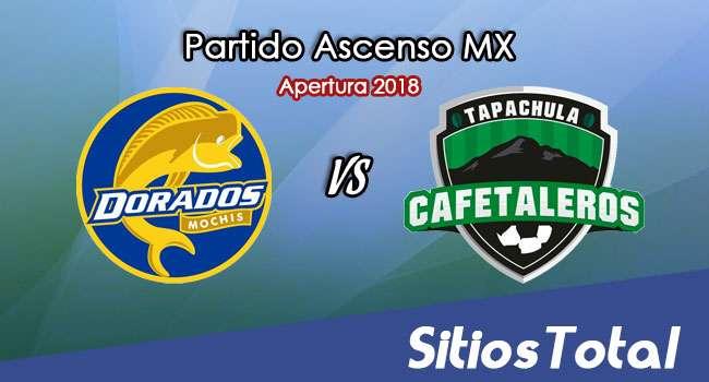 Ver Dorados de Sinaloa vs Cafetaleros de Tapachula en Vivo – Ascenso MX en su Torneo de Apertura 2018