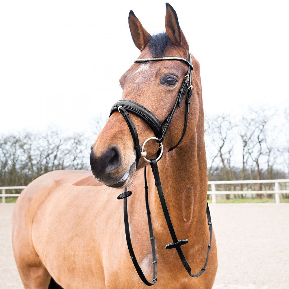 Horze-Crescendo-Lester-Snaffle-Bridle-with-U-Shaped-Browband-and-Anti-Slip-Reins miniature 8