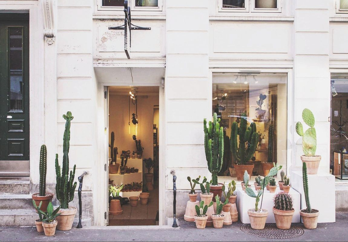 Kaktus Copenhagen | Guide to Interior shops in Copenhagen by Kreavilla