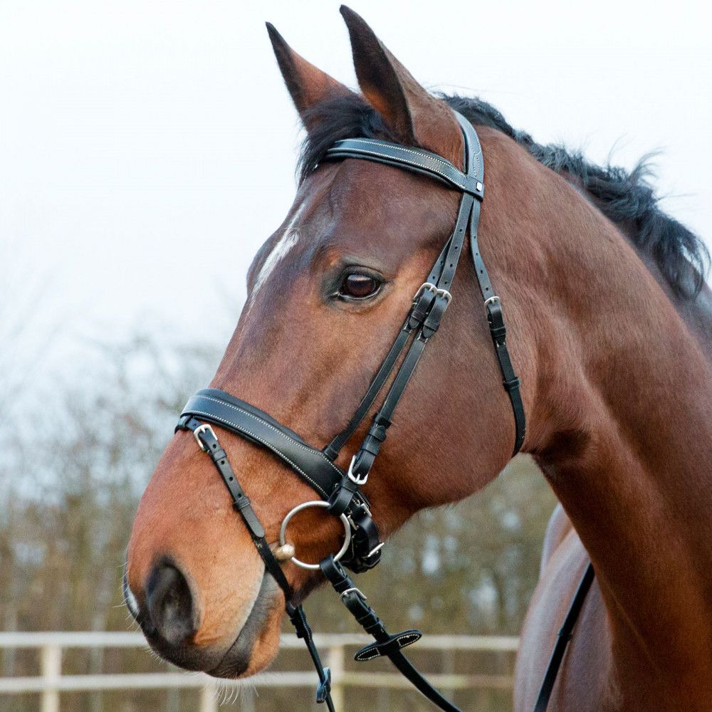 Horze-Venice-Snaffle-Bridle-with-Leather-Reins-and-a-Pull-Back-Noseband miniature 7