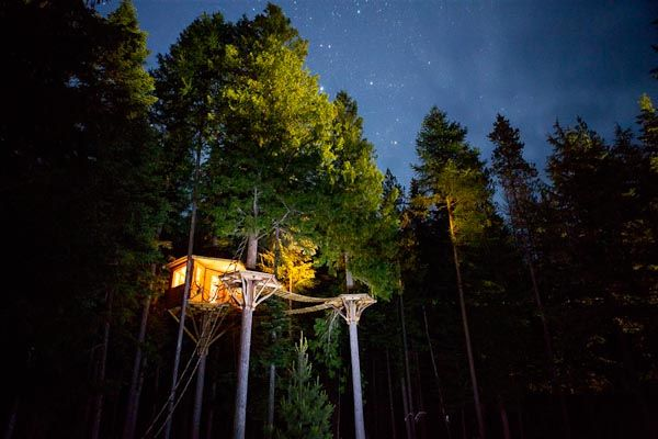 Backyard Treehouse (Sandpoint/ Idaho)