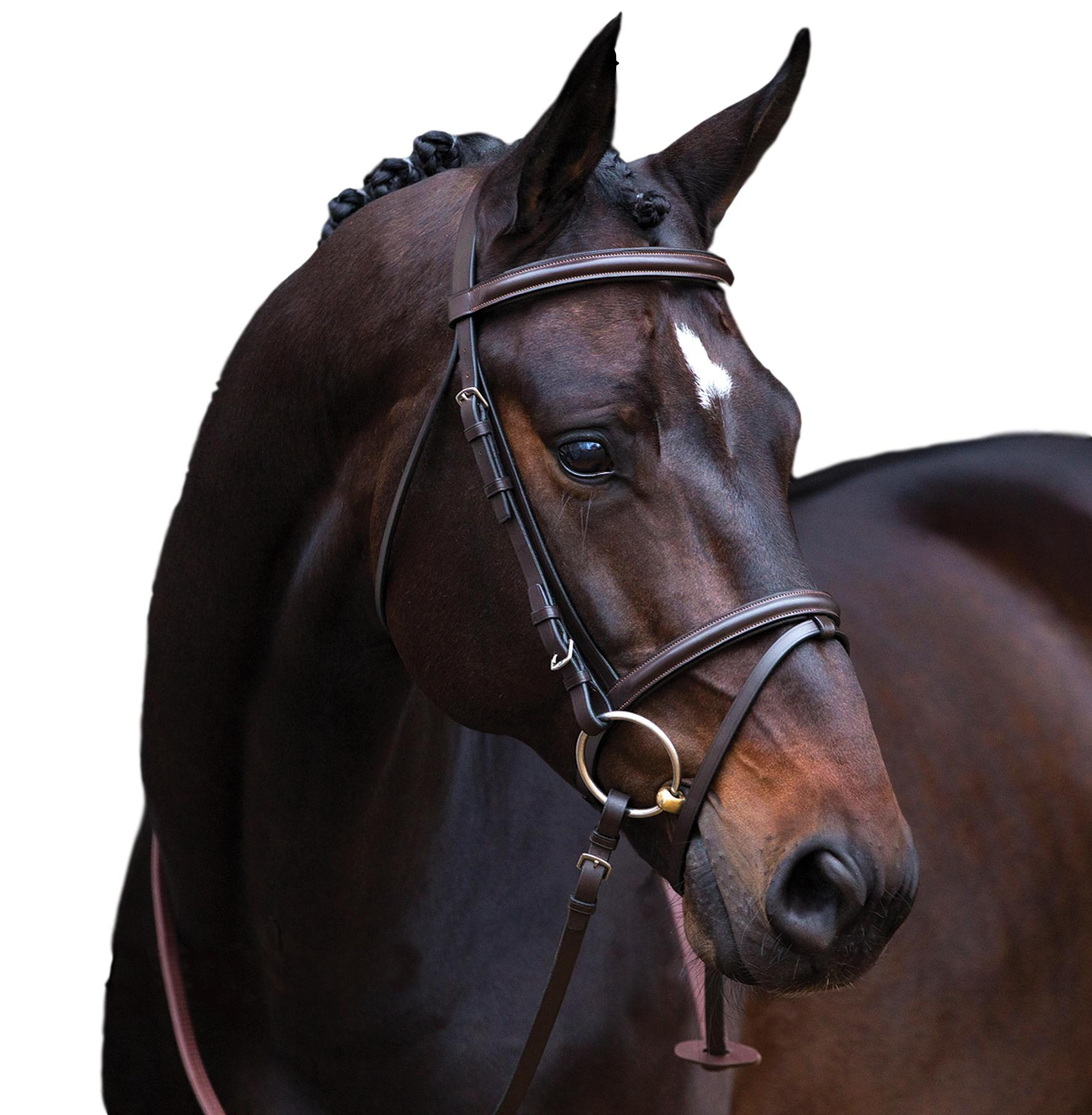 Horseware Ireland Ireland Horseware Amigo Padded and Shaped Leder Bridle with Rubber Reins 7beaa2