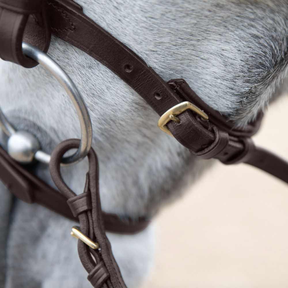 Horze-Trajan-Leather-Snaffle-Flash-Bridle-with-Narrow-Browband-and-Reins miniature 21