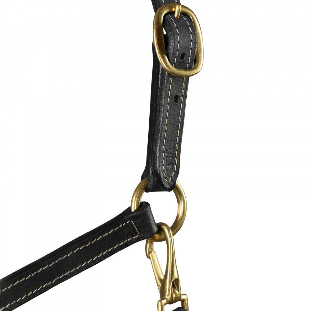 Horze-Fremont-Economical-Leather-Halter-with-Adjustable-Nose-and-Throat-Snap thumbnail 4