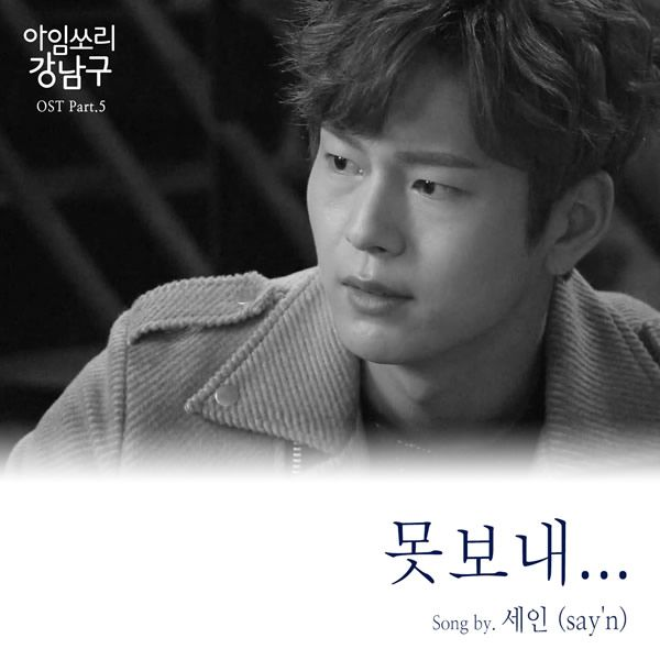 Download say`n - Can`t Let You Go (OST I'm Sorry Kang Nam Goo) MP3