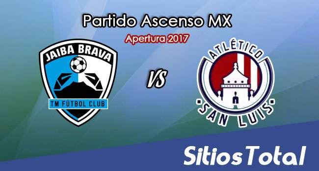 Tampico Madero vs Atletico San Luis en Vivo – Online, Por TV, Radio en Linea, MxM – Apertura 2017 – Ascenso MX