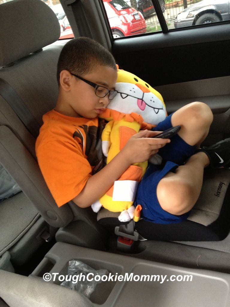 Plan A Road Trip >> Seat Pets and Tummy Stuffers