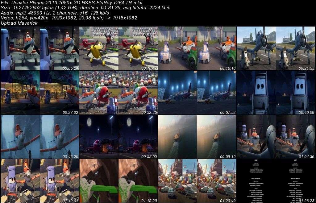 Uçaklar - 2013 3D BluRay m1080p H-SBS Türkçe Dublaj MKV indir