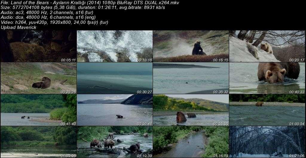 Ayıların Krallığı - Land of the Bears - 2014 BluRay 1080p DuaL MKV indir