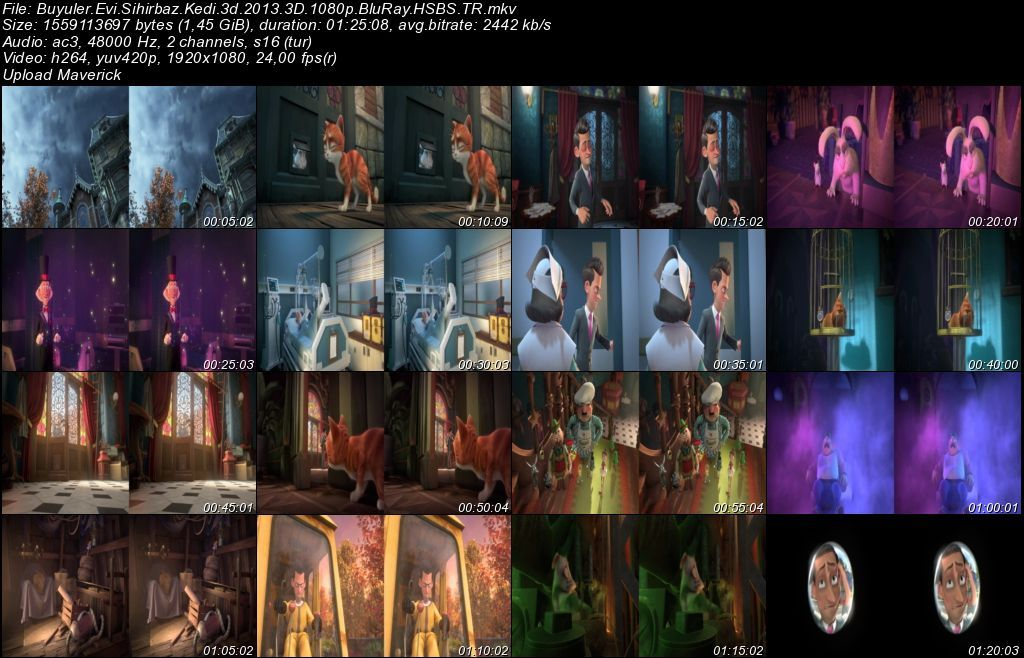 Büyüler Evi: Sihirbaz Kedi - 2013 3D BluRay m1080p H-SBS Türkçe Dublaj MKV indir