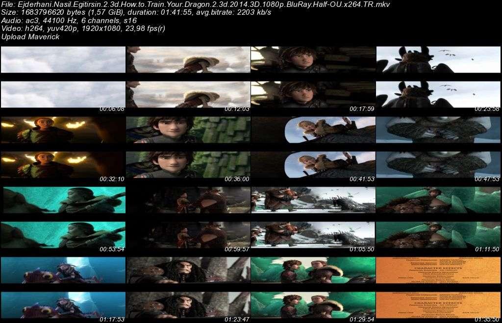 Ejderhani Nasil Egitirsin 2 - 2014 3D BluRay m1080p H-SBS Türkçe Dublaj MKV indir
