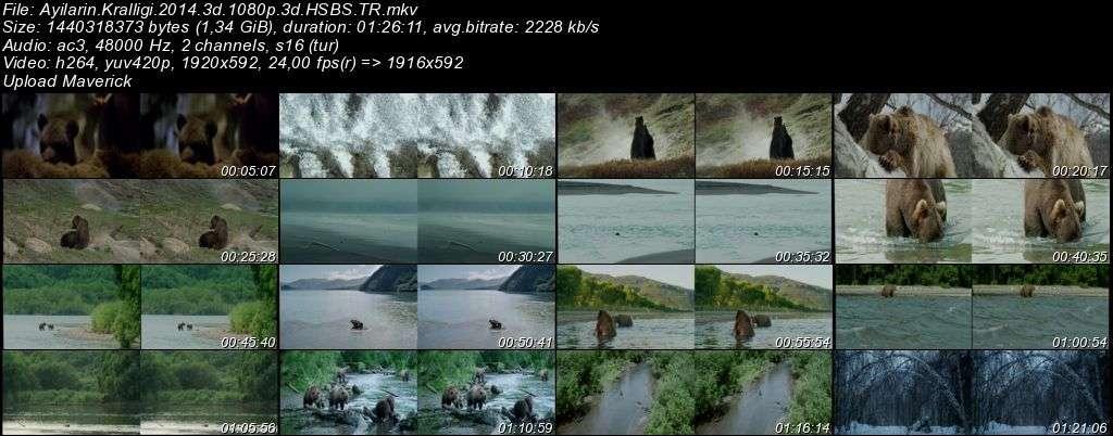 Ayıların Krallığı - 2014 3D BluRay m1080p H-SBS Türkçe Dublaj MKV indir