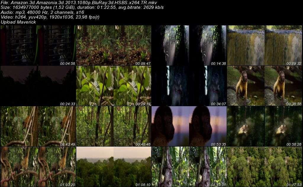 Amazon - 2013 3D BluRay m1080p H-SBS Türkçe Dublaj MKV indir