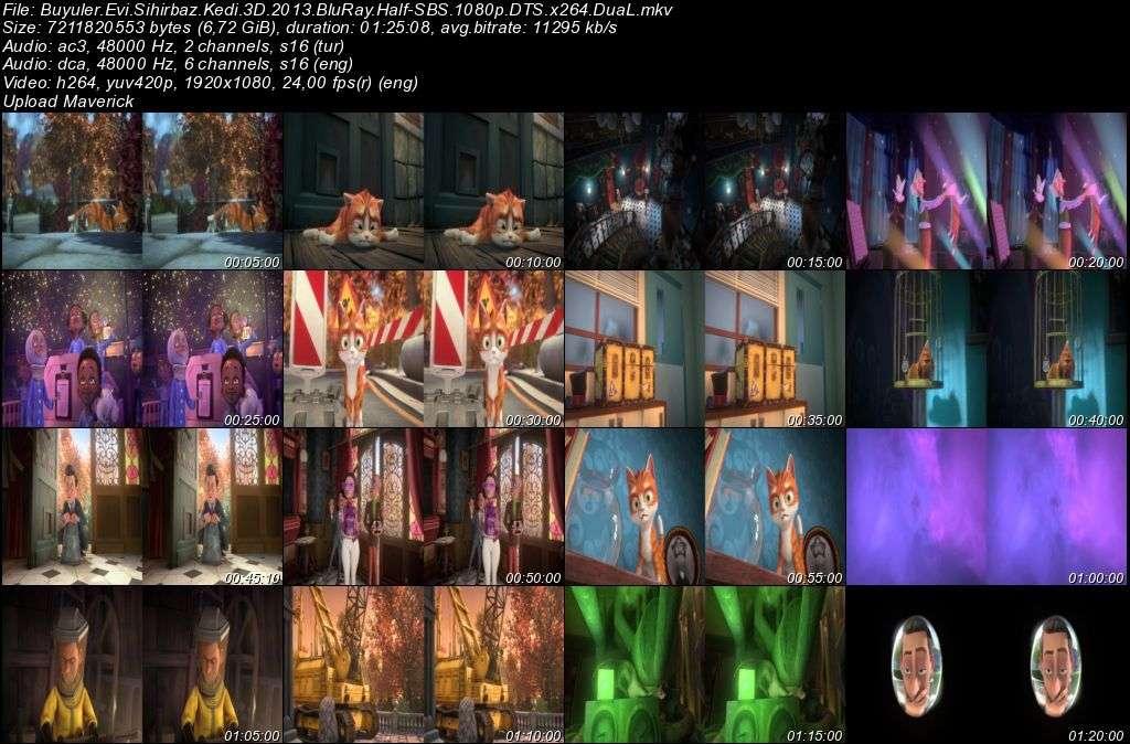 Büyüler Evi: Sihirbaz Kedi - 2013 3D BluRay 1080p Half-SBS DuaL MKV indir