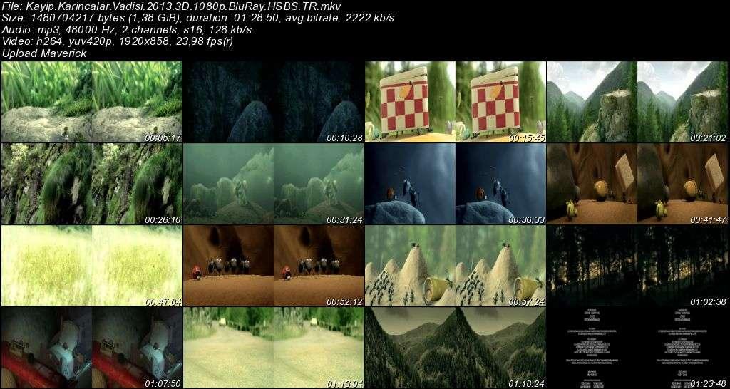 Kayıp Karıncalar Vadisi - 2013 3D BluRay m1080p H-SBS Türkçe Dublaj MKV indir