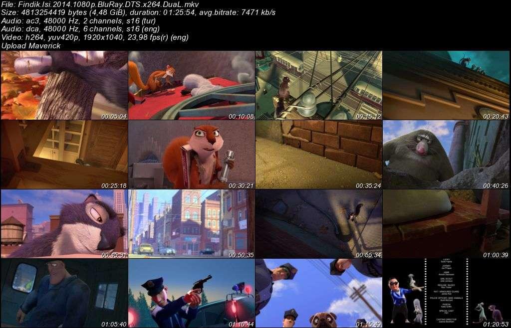 Fındık İşi - The Nut Job - 2014 BluRay 1080p DuaL MKV Teklink indir