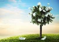 Инвестируем правильно или как не прогореть на инвестициях