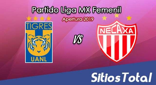 Ver Tigres vs Necaxa en Vivo – Liga MX Femenil – Apertura 2019 – Lunes 14 de Octubre del 2019