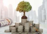 Как правильно вкладывать деньги и не потерять