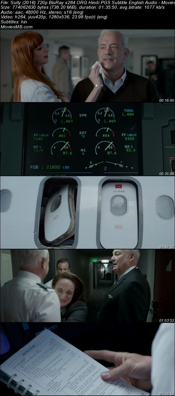 Sully 2016 720p BluRay ORG Hindi PGS Subtitle English Audio