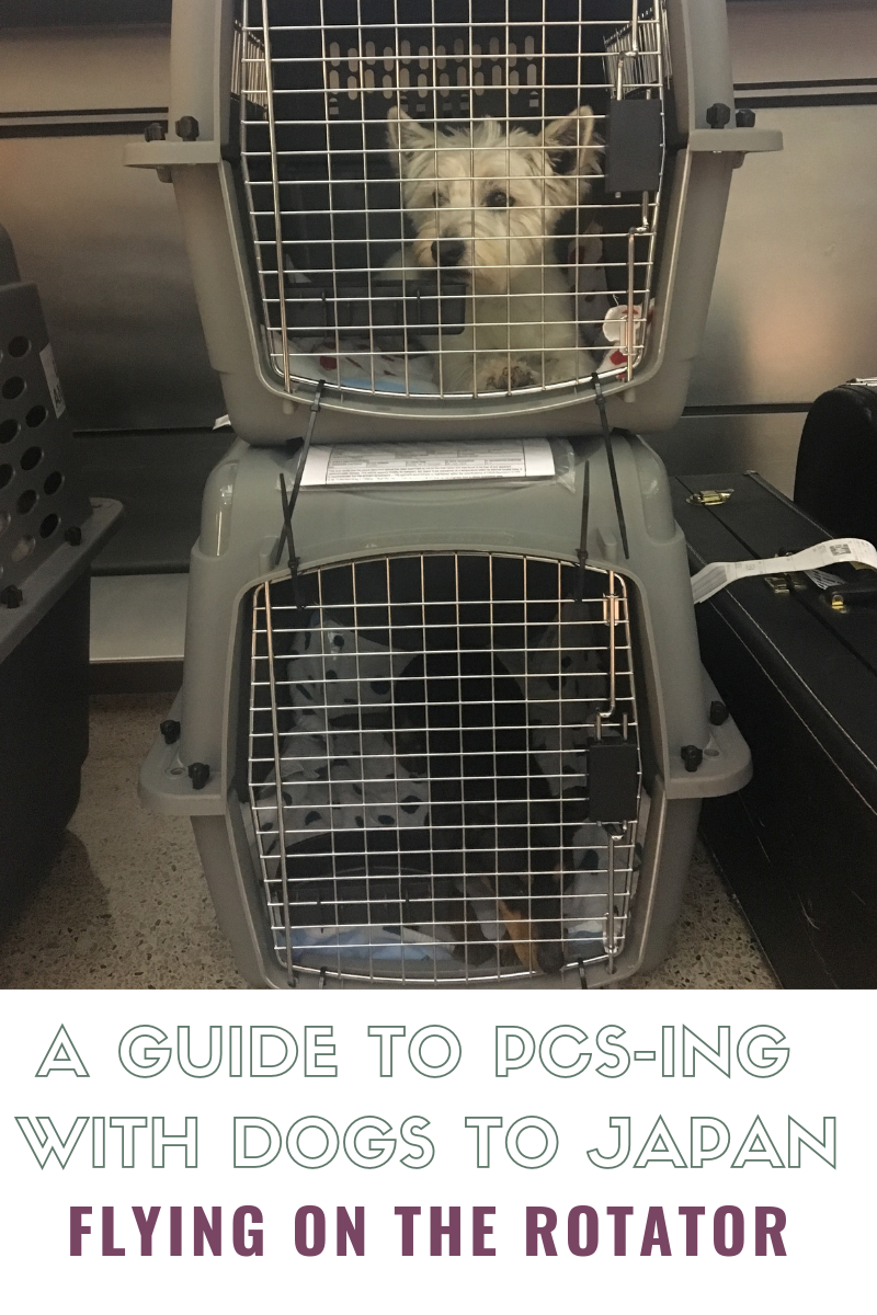 PCSing to Japan with Dogs