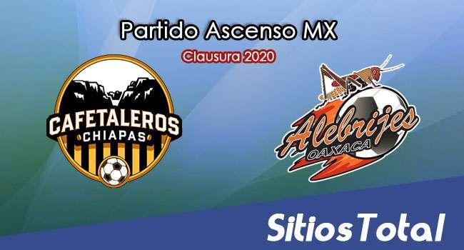 Ver Cafetaleros de Chiapas vs Alebrijes de Oaxaca en Vivo – Ascenso MX en su Torneo de Clausura 2020