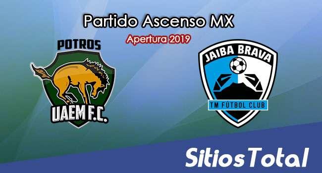Ver Potros UAEM vs Tampico Madero en Vivo – Ascenso MX en su Torneo de Apertura 2019