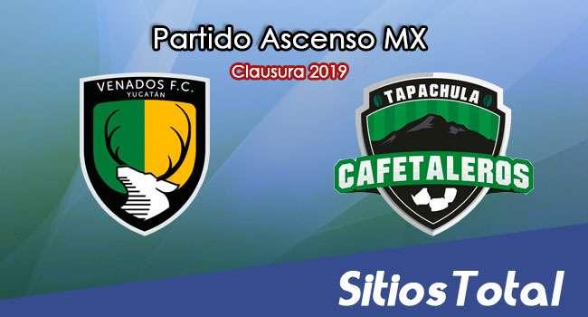 Ver Venados vs Cafetaleros de Tapachula en Vivo – Ascenso MX en su Torneo de Clausura 2019