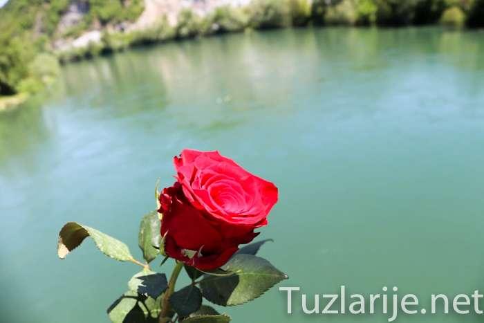 U Drinu spuštene 603 ruže za ubijene Bratunčane - FOTO