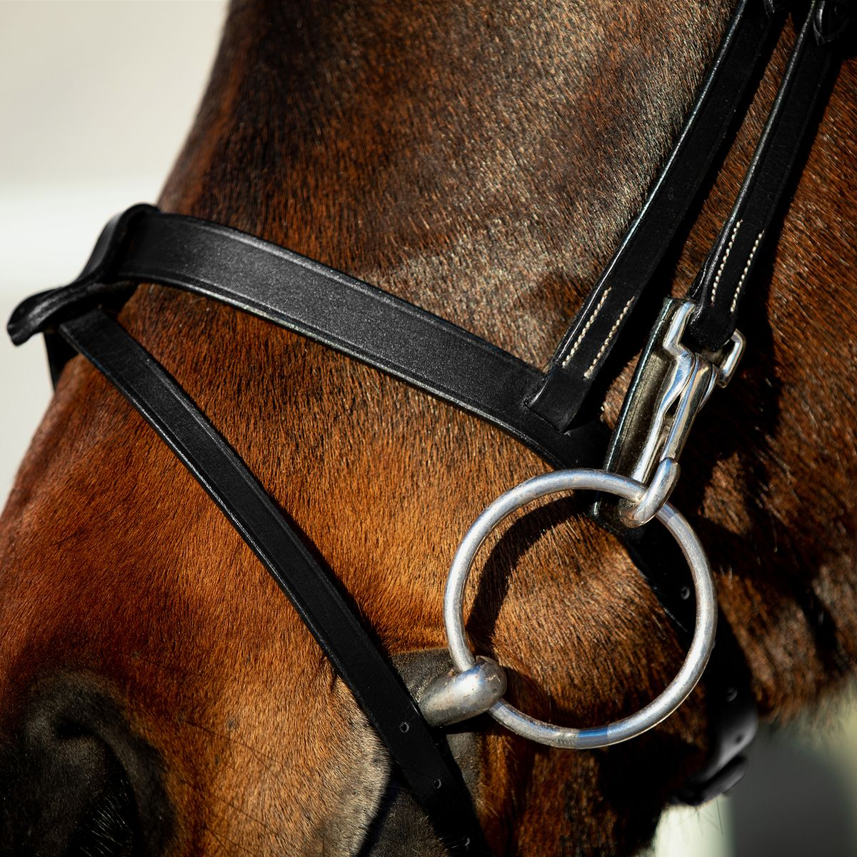 Horze-Supreme-Sparta-Hunter-Bridle-with-Wide-Browband-and-Detachable-Flash miniature 16