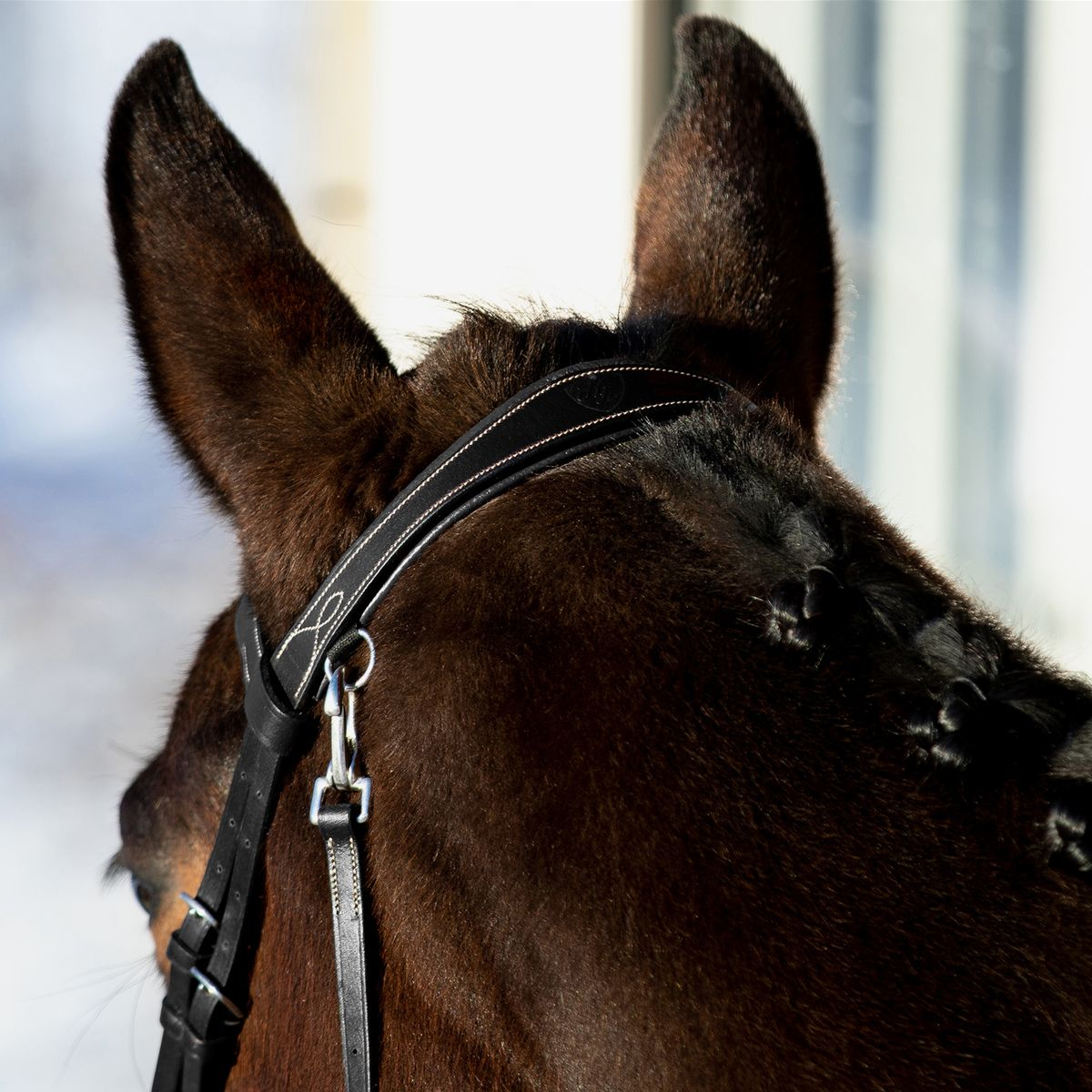 Horze-Supreme-Sparta-Hunter-Bridle-with-Wide-Browband-and-Detachable-Flash miniature 15