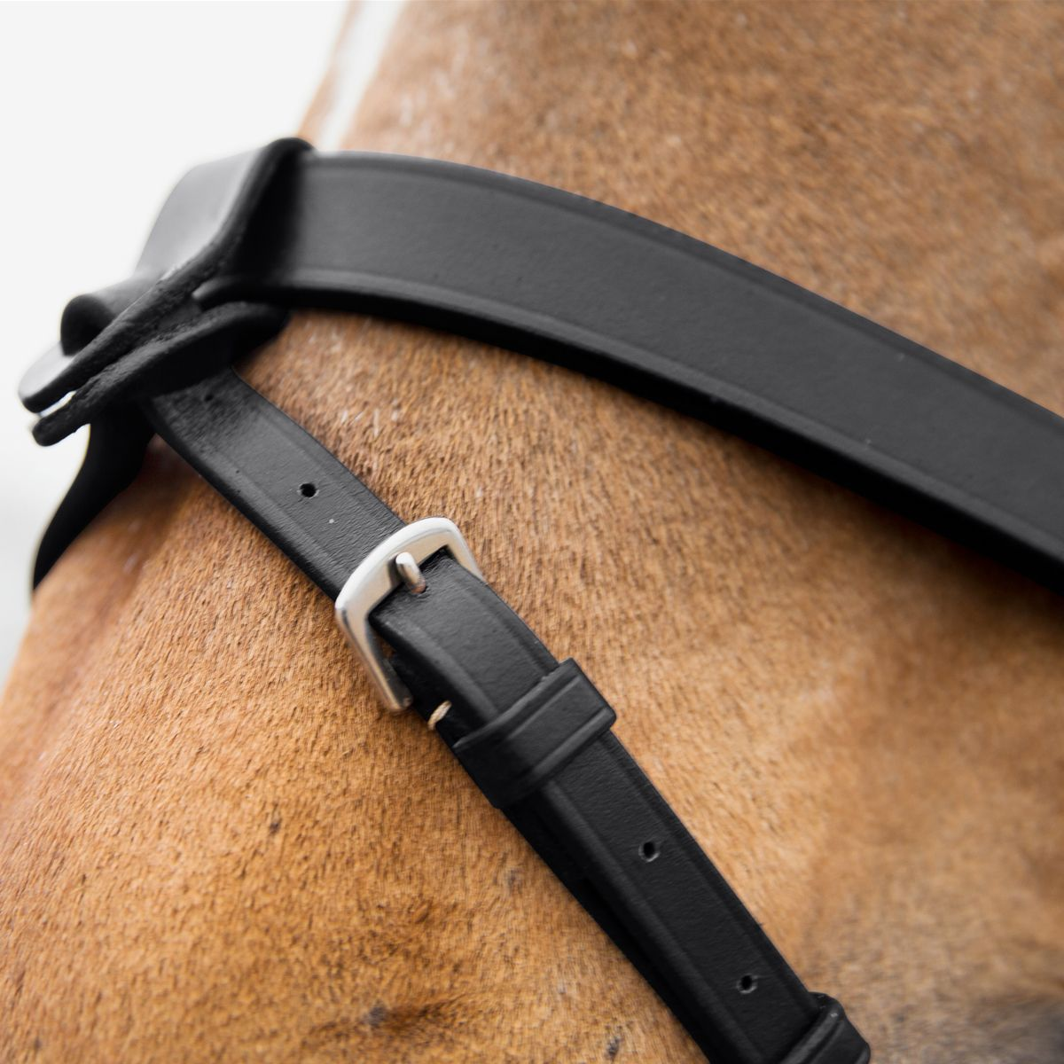 Horze-Supreme-Sparta-Hunter-Bridle-with-Wide-Browband-and-Detachable-Flash miniature 18