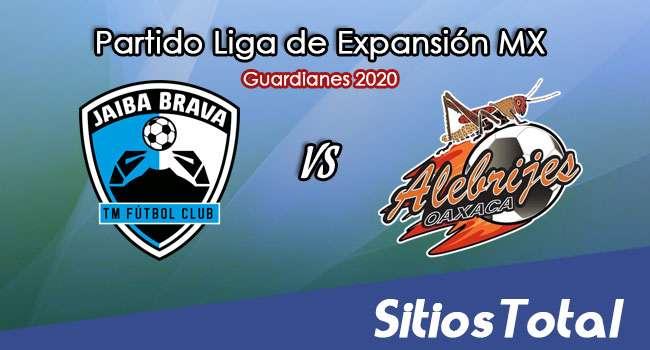 Tampico Madero vs Alebrijes de Oaxaca en Vivo – Liga de Expansión MX – Guardianes 2020 – Jueves 1 de Octubre del 2020