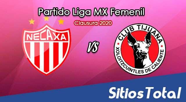 Ver Necaxa vs Xolos Tijuana en Vivo – Liga MX Femenil – Guardianes – Jueves 19 de Noviembre del 2020