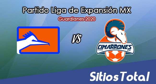 Correcaminos vs Cimarrones de Sonora en Vivo – Liga de Expansión MX – Guardianes 2020 – Martes 22 de Septiembre del 2020