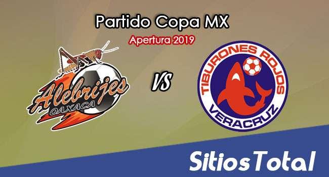 Alebrijes de Oaxaca vs Veracruz en Vivo – Copa MX – Martes 5 de Noviembre del 2019