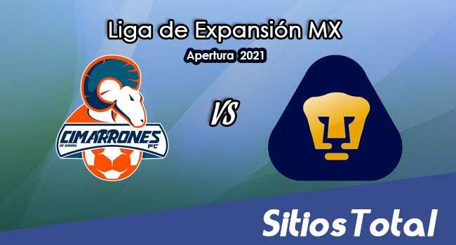 Cimarrones de Sonora vs Pumas Tabasco en Vivo – Canal de TV, Fecha, Horario, MxM, Resultado – J10 de Apertura 2021 de la  Liga de Expansión MX