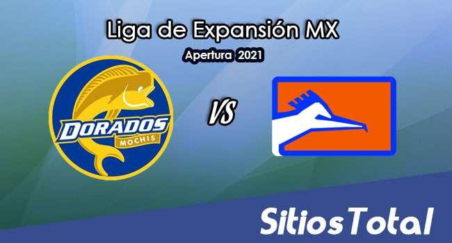 Dorados de Sinaloa vs Correcaminos en Vivo – Canal de TV, Fecha, Horario, MxM, Resultado – J9 de Apertura 2021 de la  Liga de Expansión MX